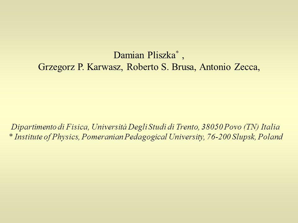 Damian Pliszka *, Grzegorz P. Karwasz, Roberto S.