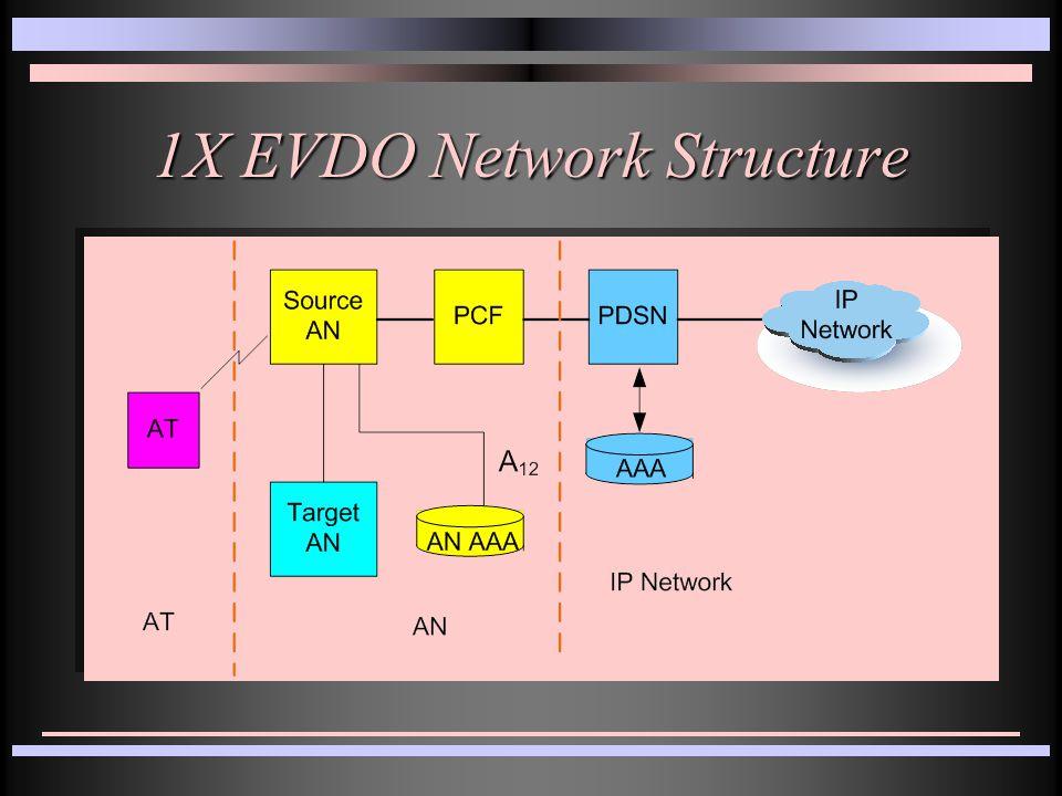 1X EVDO Network Structure
