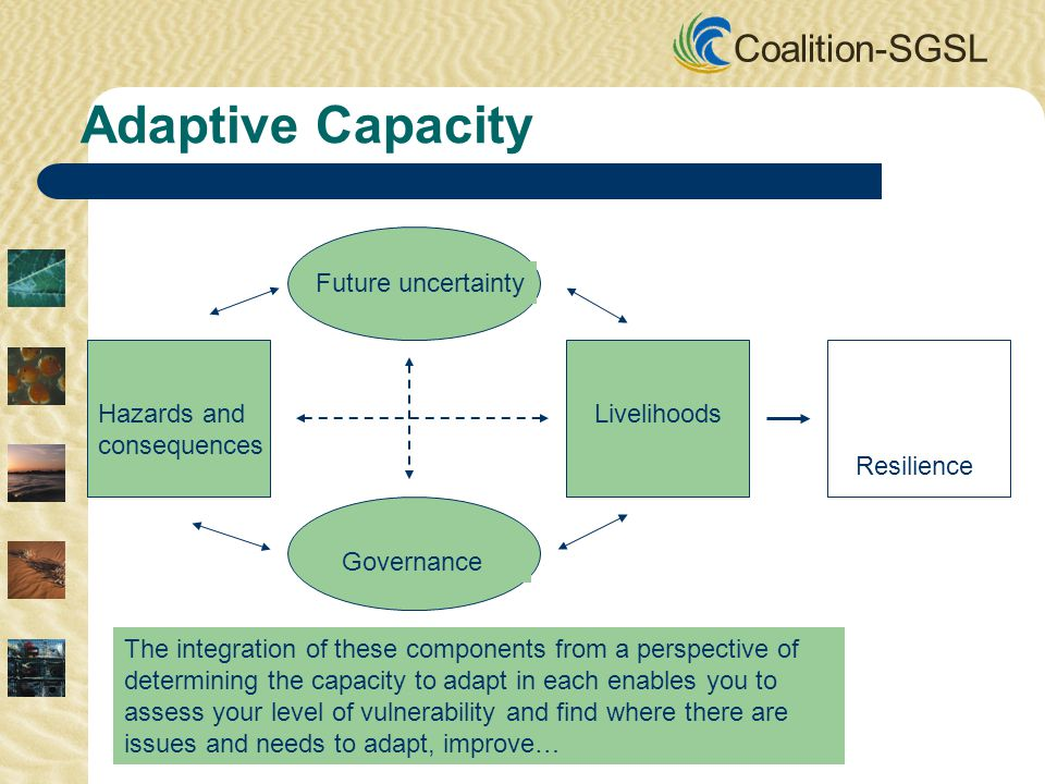 Coalition-SGSL Future uncertainty Governance Hazards and consequences Livelihoods Resilience The integration of these components from a perspective of