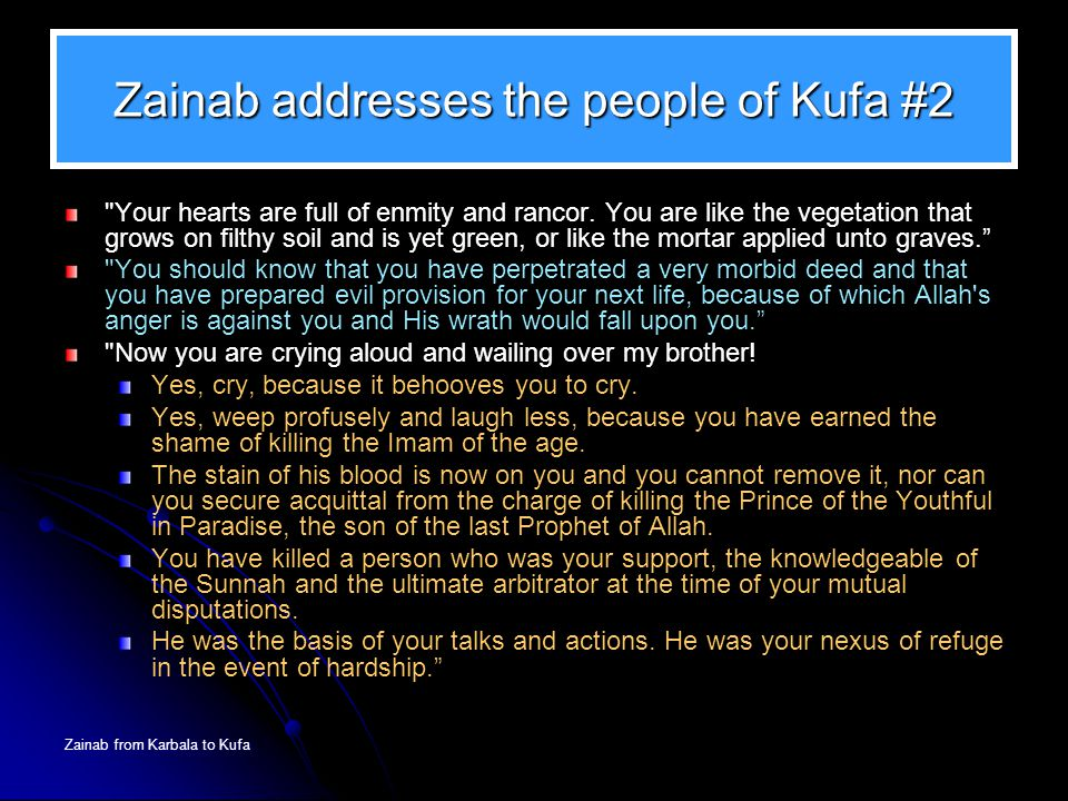 Zainab from Karbala to Kufa Zainab addresses the people of Kufa #2