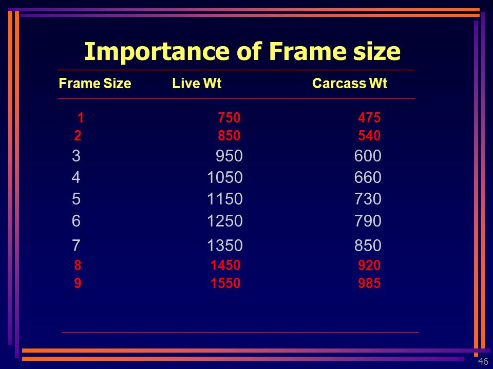 46 Frame Size Live Wt Carcass Wt 1 750 475 2 850 540 3 950600 41050660 51150730 61250790 71350850 8 1450 920 9 1550 985 Importance of Frame size