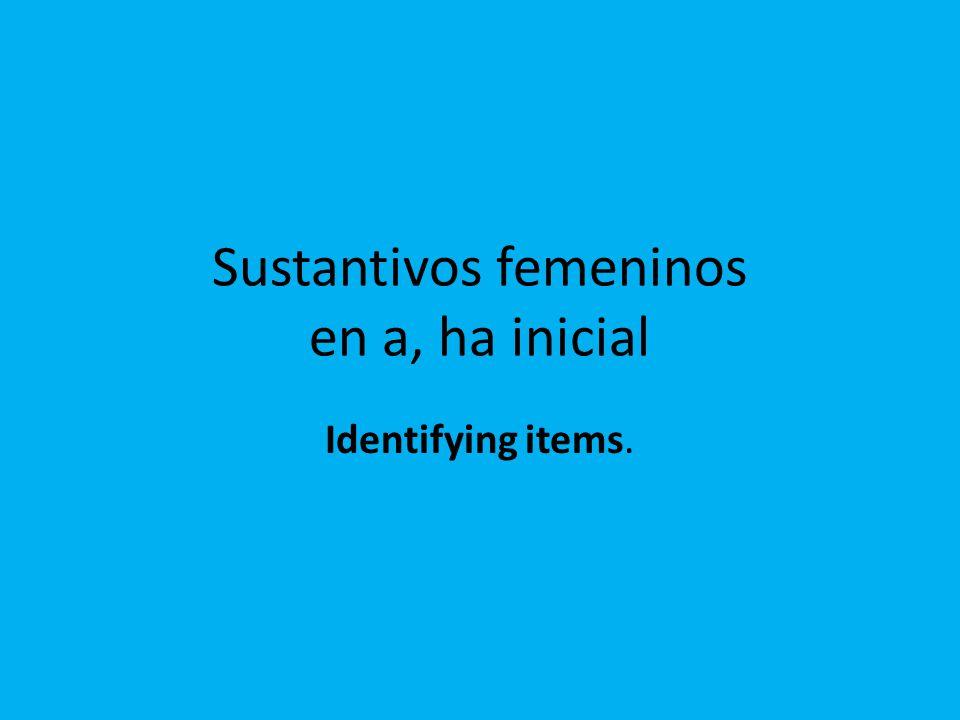 Sustantivos femeninos en a, ha inicial Identifying items.