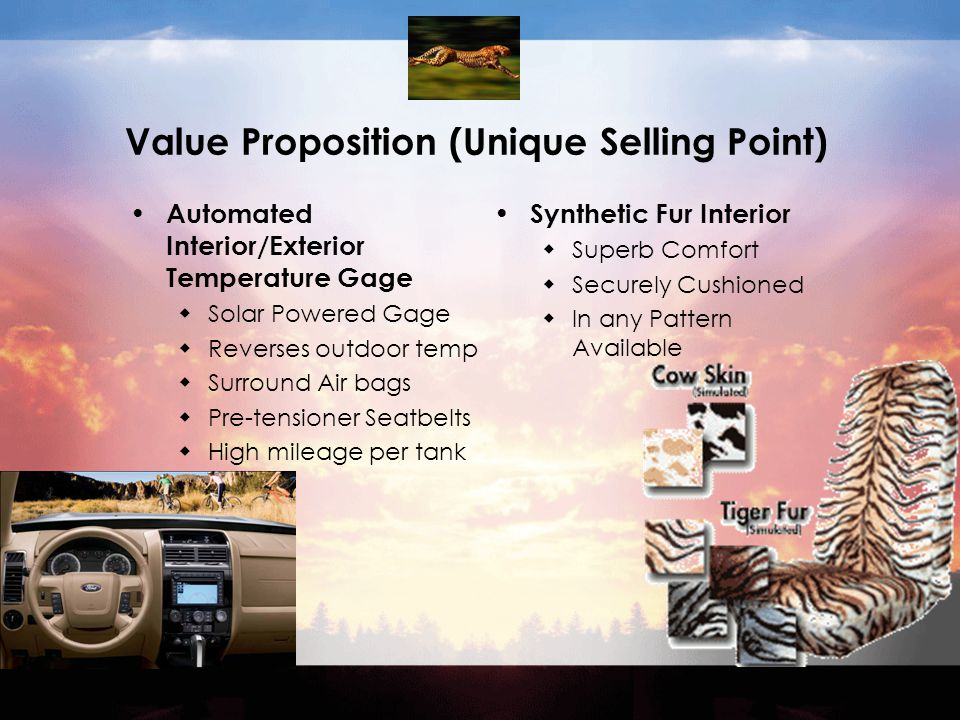 Value Proposition (Unique Selling Point) Automated Interior/Exterior Temperature Gage  Solar Powered Gage  Reverses outdoor temp  Surround Air bags  Pre-tensioner Seatbelts  High mileage per tank Synthetic Fur Interior  Superb Comfort  Securely Cushioned  In any Pattern Available