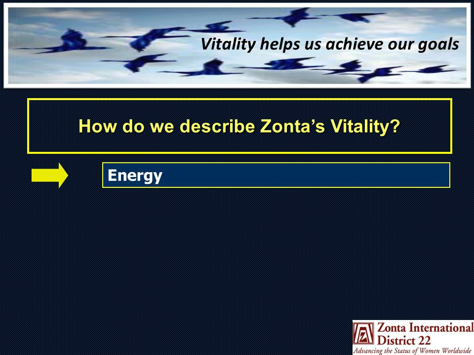 Vitality helps us achieve our goals How do we describe Zonta's Vitality.