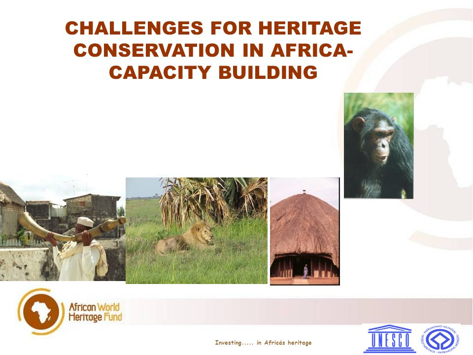 collaborative efforts in research on the implementation of the 1972 World heritage Convention between Universities in the North and those in Africa (develop best practise models) Programmes which will ensure that students from Africa can also benefit from research and teaching facilities in the North.