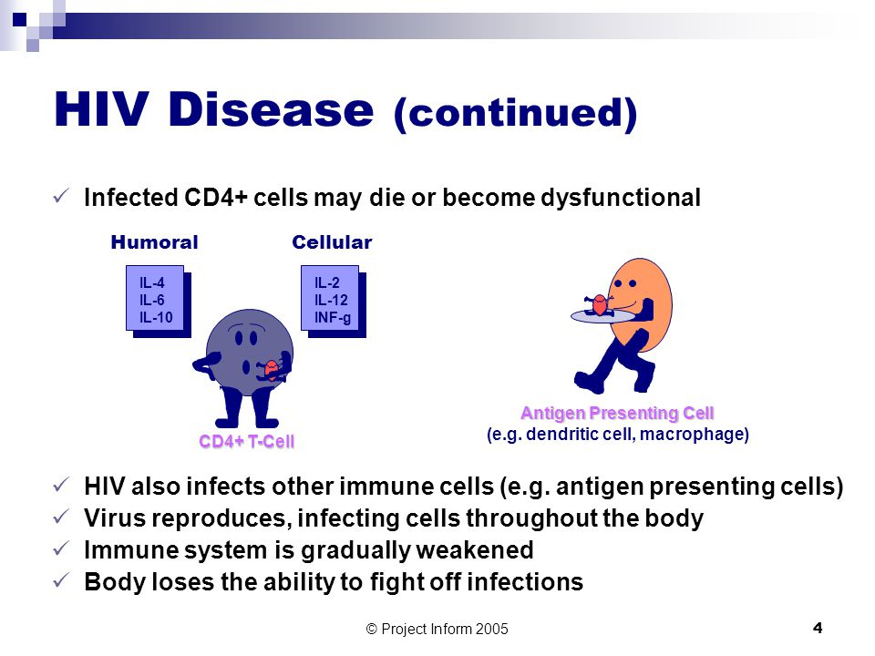 © Project Inform 20054 Infected CD4+ cells may die or become dysfunctional HIV also infects other immune cells (e.g.