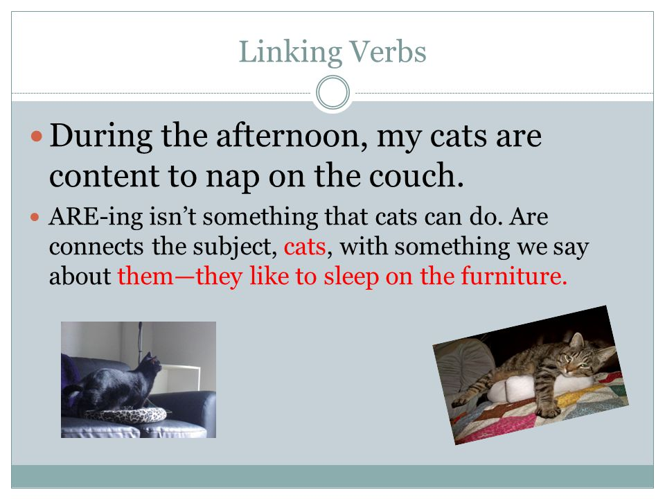 Linking Verbs During the afternoon, my cats are content to nap on the couch.