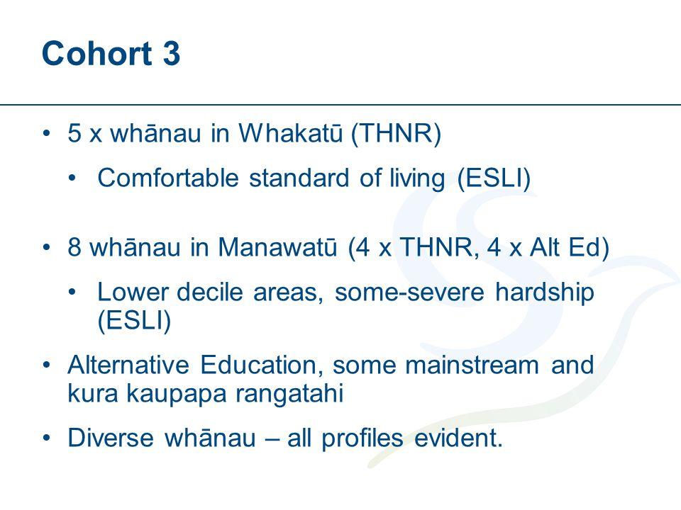 Cohort 3 5 x whānau in Whakatū (THNR) Comfortable standard of living (ESLI) 8 whānau in Manawatū (4 x THNR, 4 x Alt Ed) Lower decile areas, some-severe hardship (ESLI) Alternative Education, some mainstream and kura kaupapa rangatahi Diverse whānau – all profiles evident.