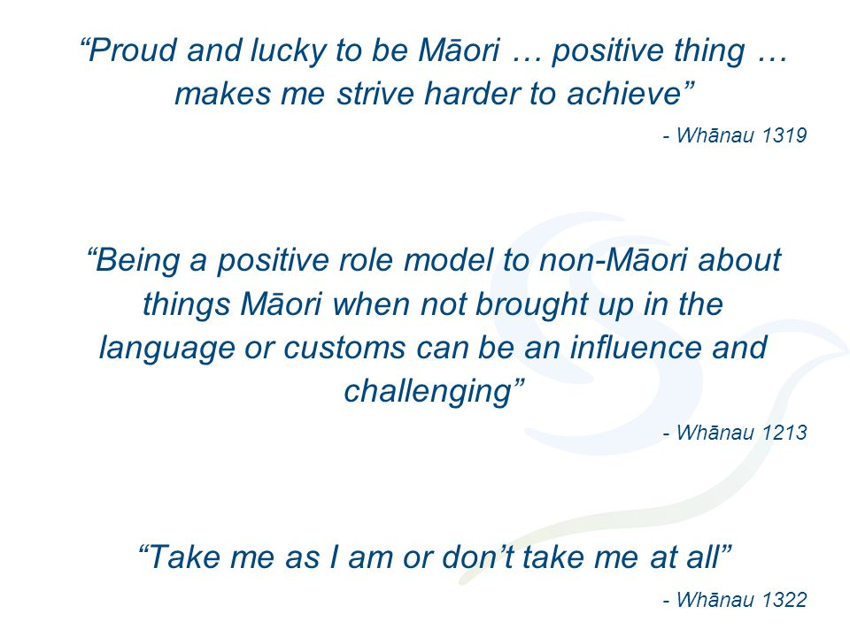 Proud and lucky to be Māori … positive thing … makes me strive harder to achieve - Whānau 1319 Being a positive role model to non-Māori about things Māori when not brought up in the language or customs can be an influence and challenging - Whānau 1213 Take me as I am or don't take me at all - Whānau 1322