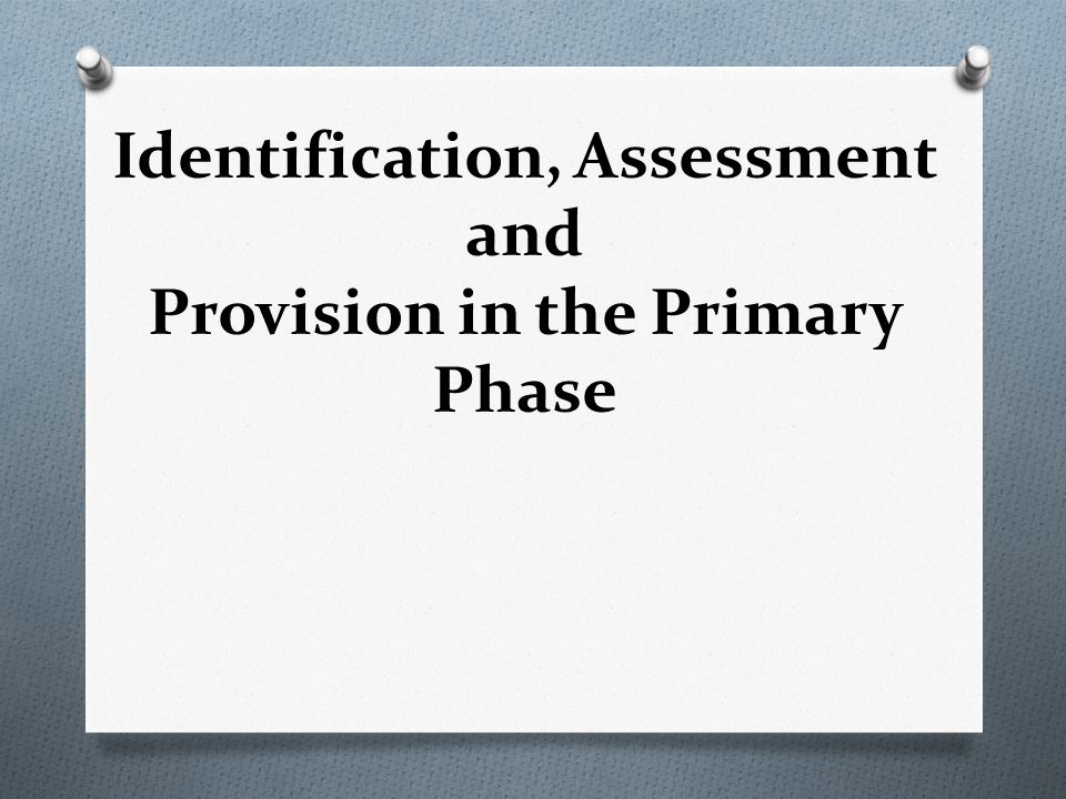 Identification, Assessment and Provision in the Primary Phase