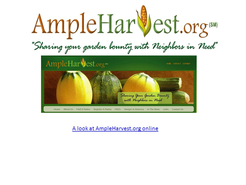 A look at AmpleHarvest.org online