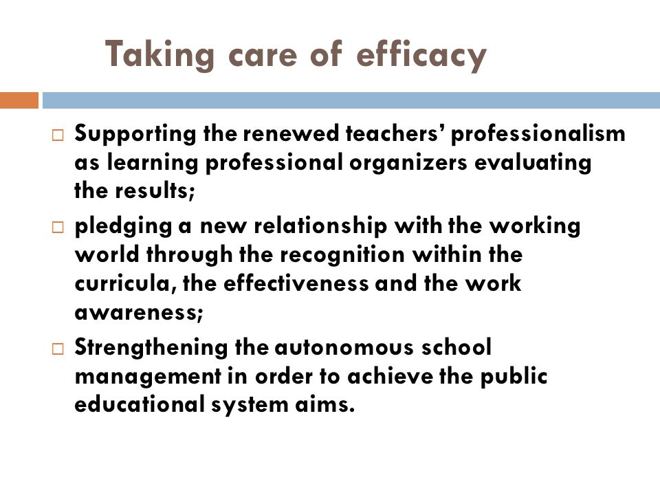 Taking care of efficacy  Supporting the renewed teachers' professionalism as learning professional organizers evaluating the results;  pledging a ne