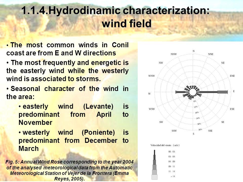 1.1.4.Hydrodinamic characterization: wind field Fig.