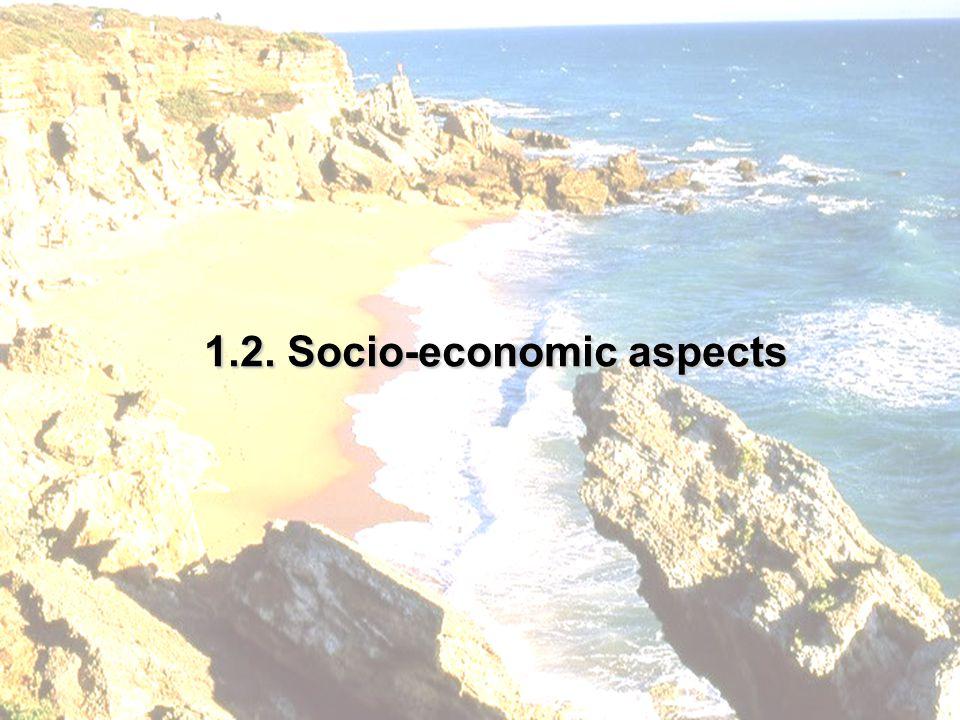 1.2. Socio-economic aspects