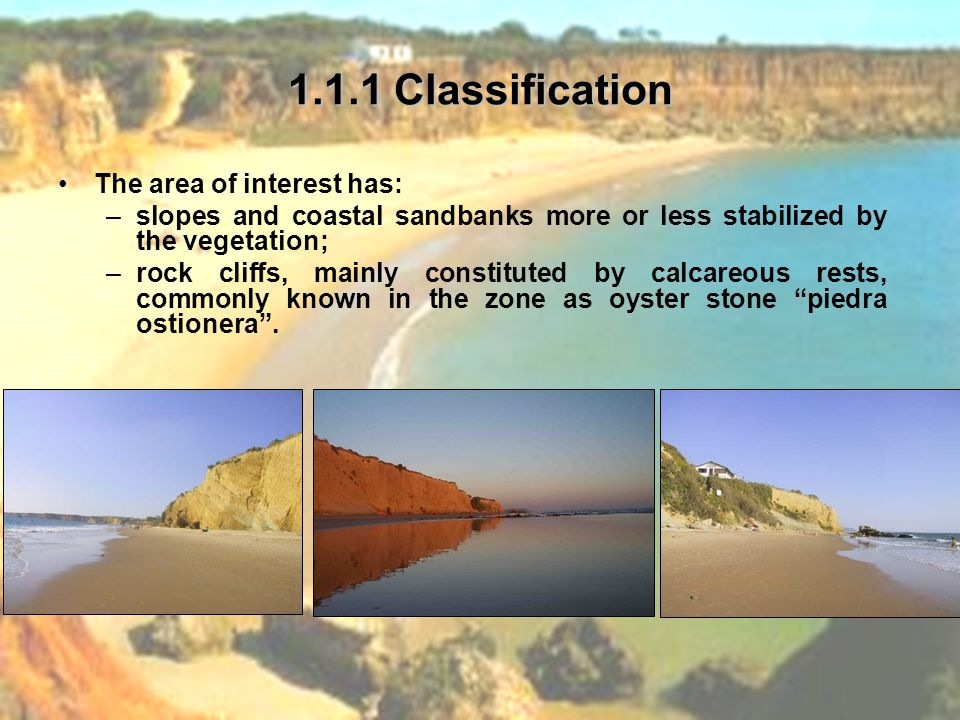 1.1.1 Classification The area of interest has: –slopes and coastal sandbanks more or less stabilized by the vegetation; –rock cliffs, mainly constituted by calcareous rests, commonly known in the zone as oyster stone piedra ostionera .