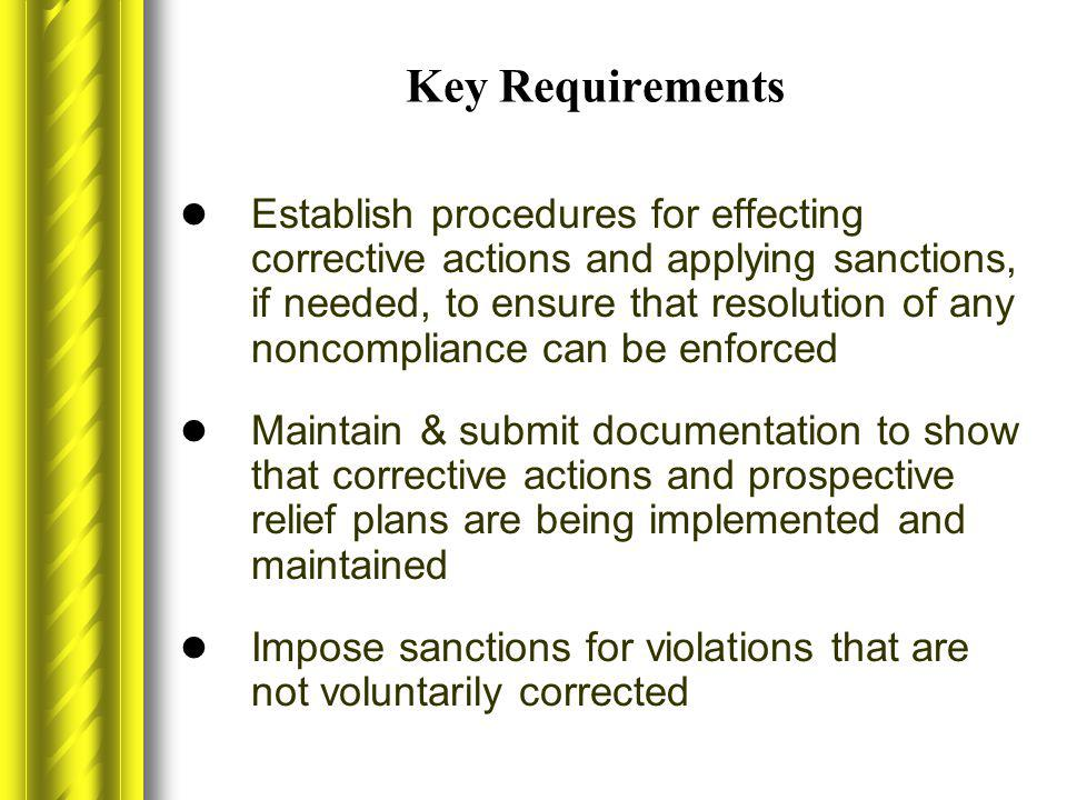 Key Requirements Establish procedures for effecting corrective actions and applying sanctions, if needed, to ensure that resolution of any noncomplian