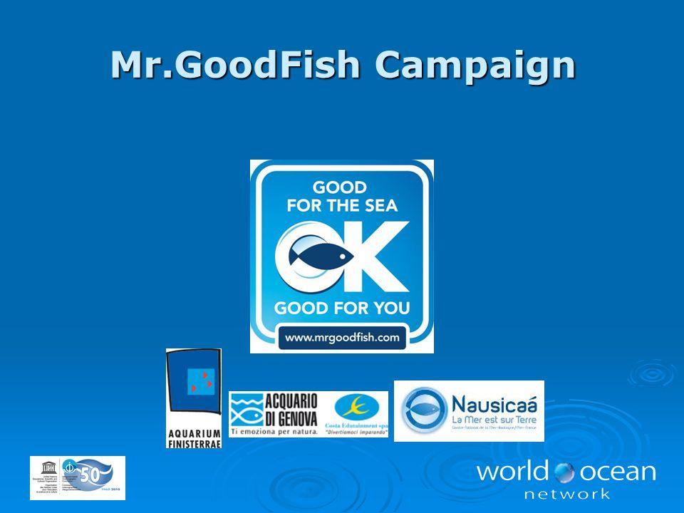 Mr.GoodFish Campaign