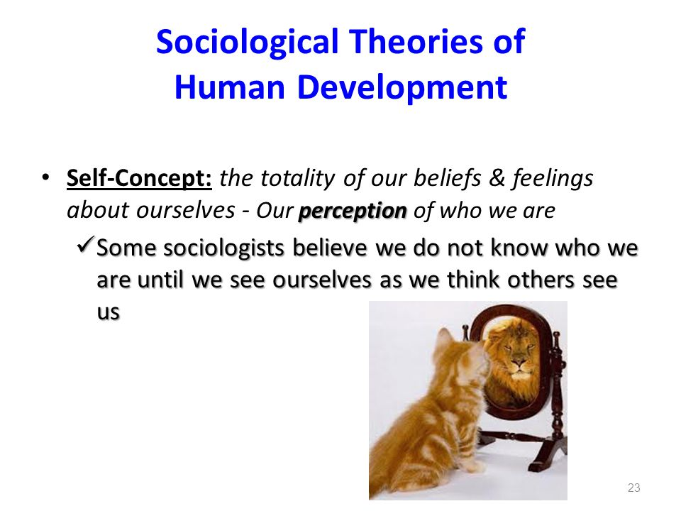 Sociological Theories of Human Development perception Self-Concept: the totality of our beliefs & feelings about ourselves - Our perception of who we