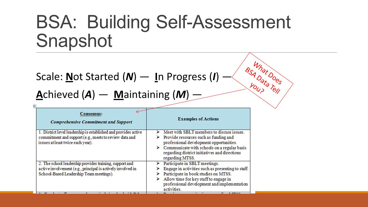 BSA: Building Self-Assessment Snapshot Scale: Not Started (N) — In Progress (I) — Achieved (A) — Maintaining (M) — What Does BSA Data Tell you?