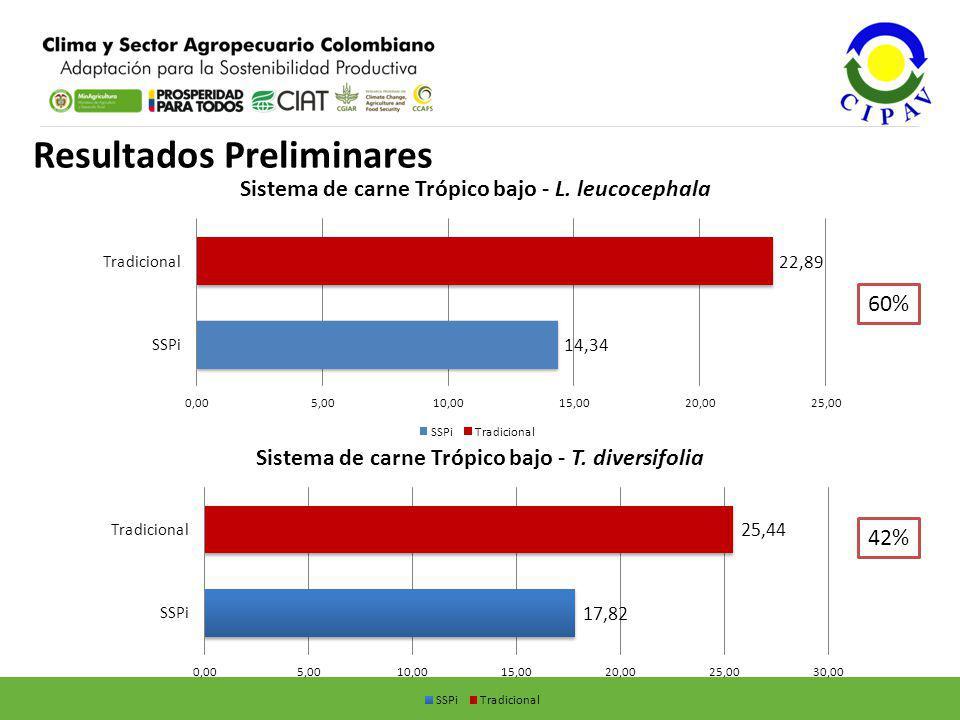Resultados Preliminares 60% 42%