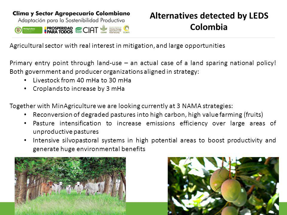 Alternatives detected by LEDS Colombia Agricultural sector with real interest in mitigation, and large opportunities Primary entry point through land-use – an actual case of a land sparing national policy.