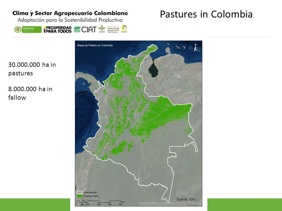 Pastures in Colombia Fuente: IGAC 30.000.000 ha in pastures 8.000.000 ha in fallow