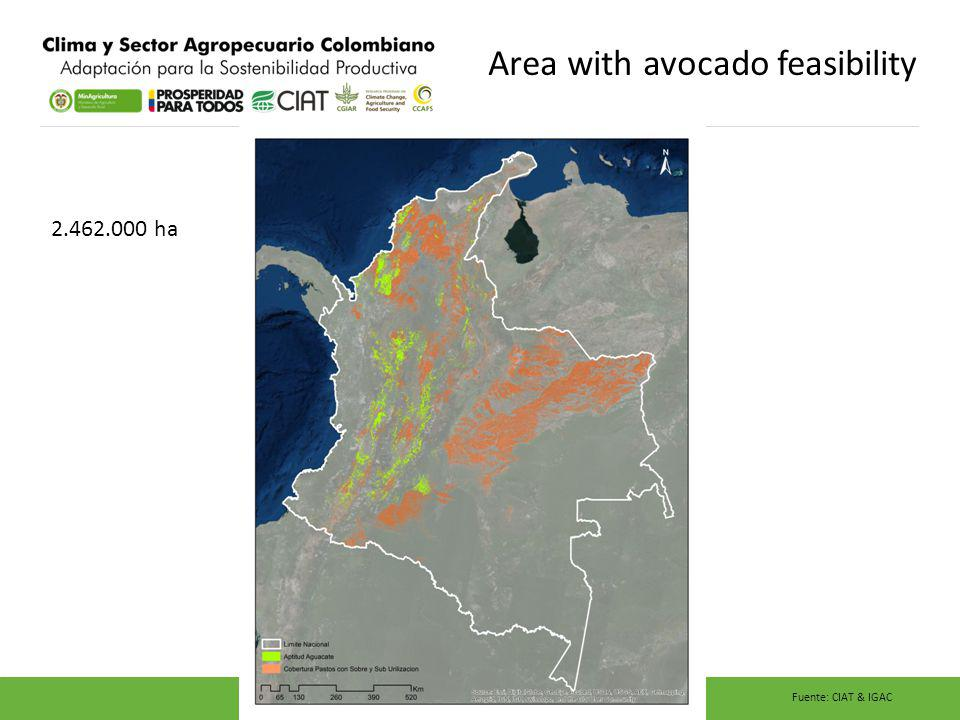 Area with avocado feasibility 2.462.000 ha