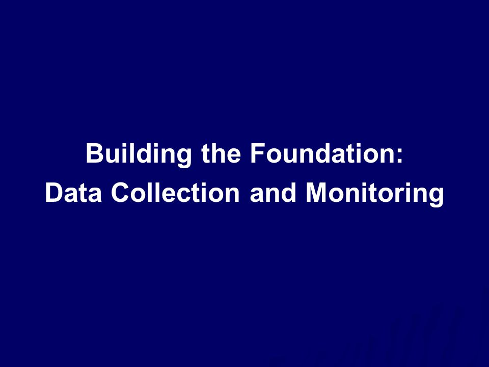 Building the Foundation: Data Collection and Monitoring