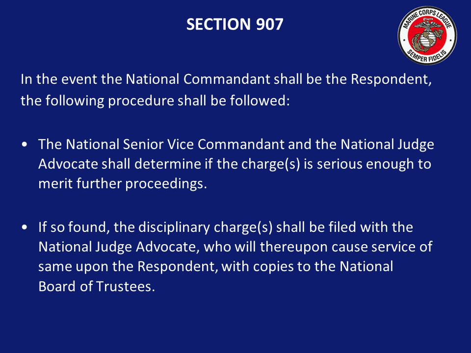 SECTION 907 NATIONAL COMMANDANT