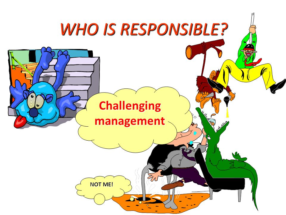 WHO IS RESPONSIBLE? NOT ME! Challenging management