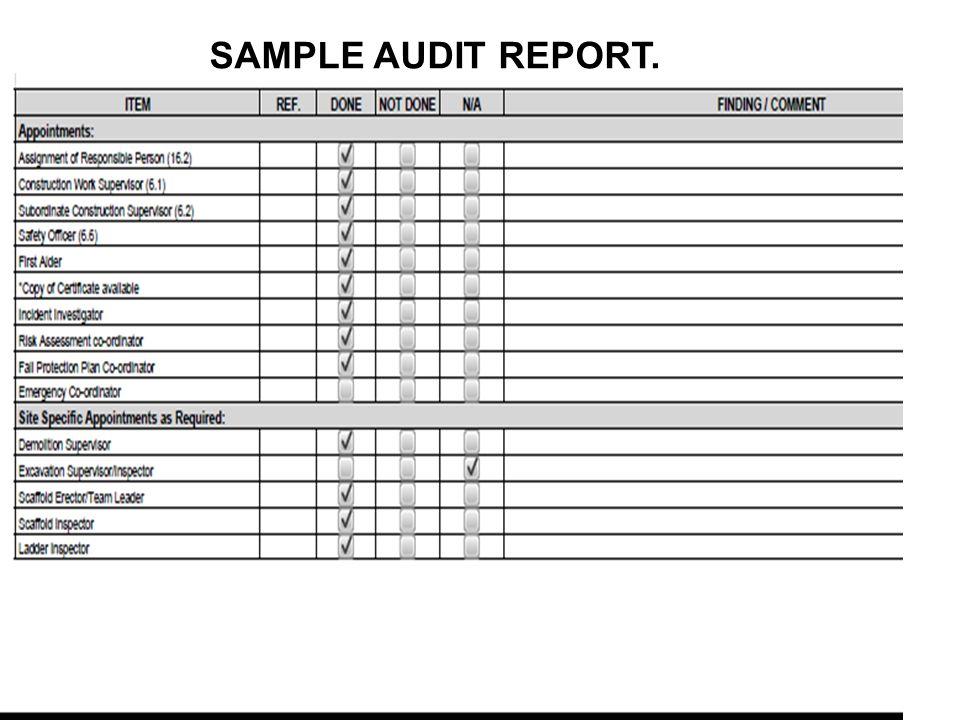 SAMPLE AUDIT REPORT.