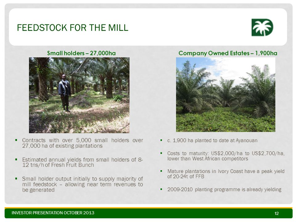INVESTOR PRESENTATION OCTOBER 2013 FEEDSTOCK FOR THE MILL  Contracts with over 5,000 small holders over 27,000 ha of existing plantations  Estimated annual yields from small holders of 8- 12 tns/h of Fresh Fruit Bunch  Small holder output initially to supply majority of mill feedstock – allowing near term revenues to be generated 12  c.