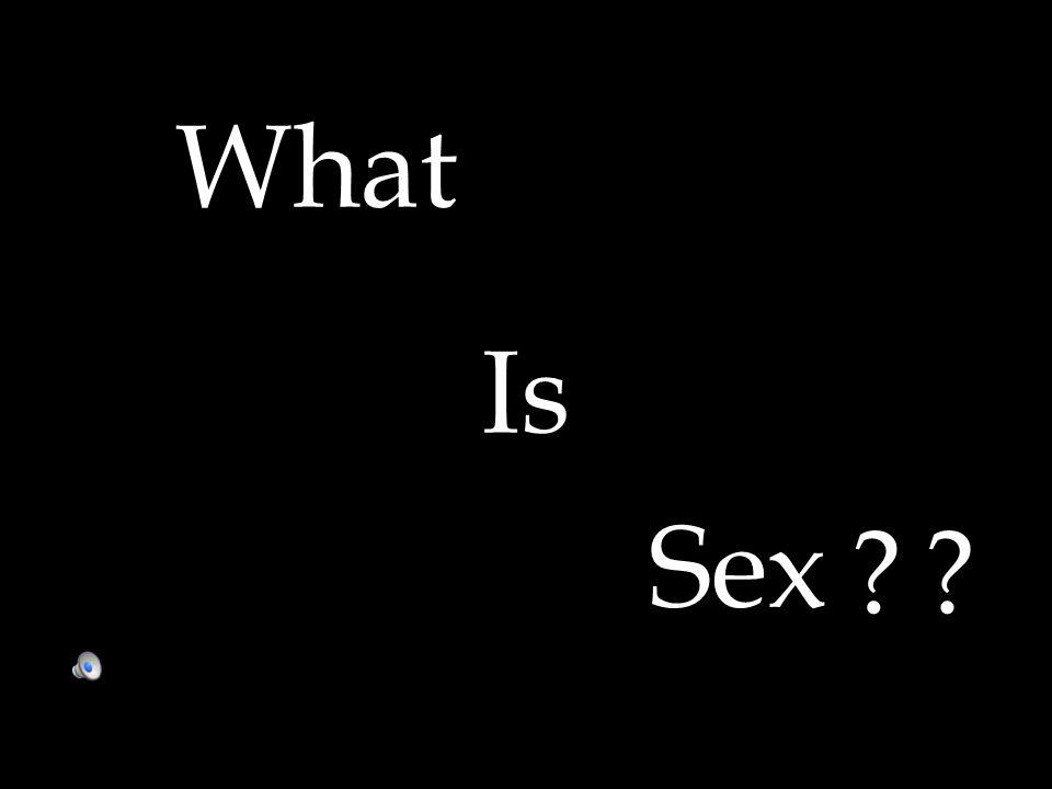 What Is Sex ??