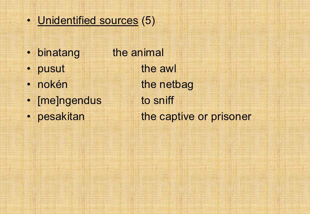 Unidentified sources (5) binatangthe animal pusutthe awl nokénthe netbag [me]ngendusto sniff pesakitanthe captive or prisoner