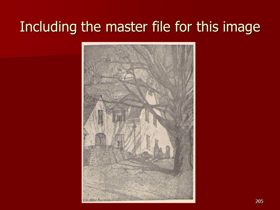 Including the master file for this image 205