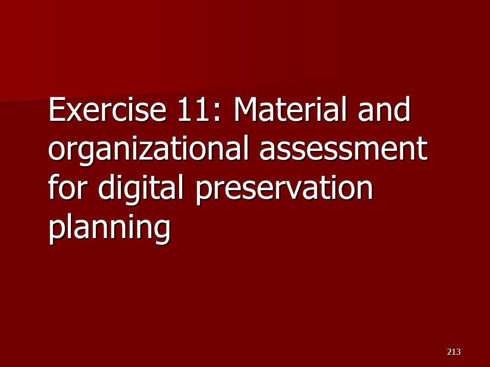 Exercise 11: Material and organizational assessment for digital preservation planning 213