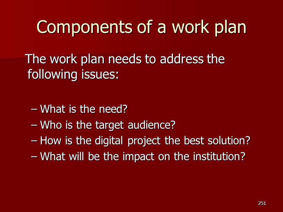 Components of a work plan The work plan needs to address the following issues: The work plan needs to address the following issues: –What is the need?