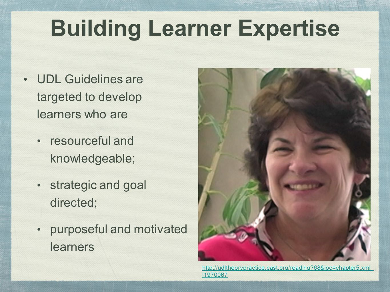 Building Learner Expertise UDL Guidelines are targeted to develop learners who are resourceful and knowledgeable; strategic and goal directed; purposeful and motivated learners http://udltheorypractice.cast.org/reading 68&loc=chapter5.xml_ l1970067