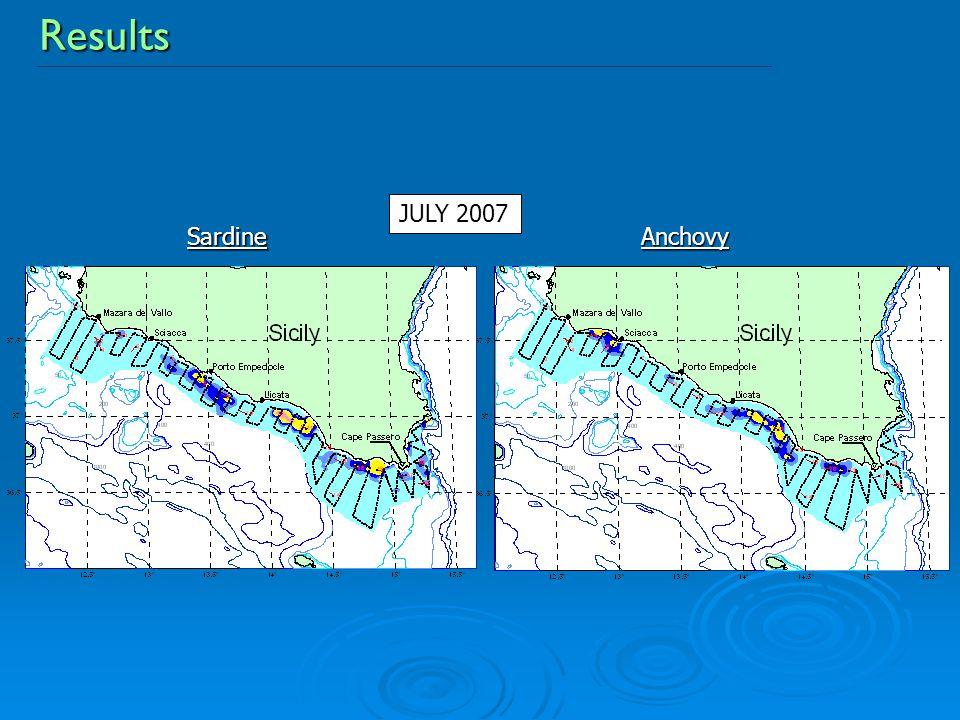 ResultsAnchovySardine JULY 2007