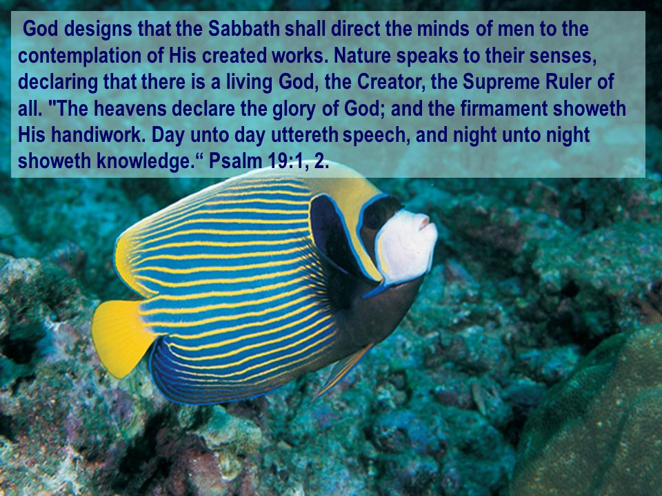God designs that the Sabbath shall direct the minds of men to the contemplation of His created works. Nature speaks to their senses, declaring that th