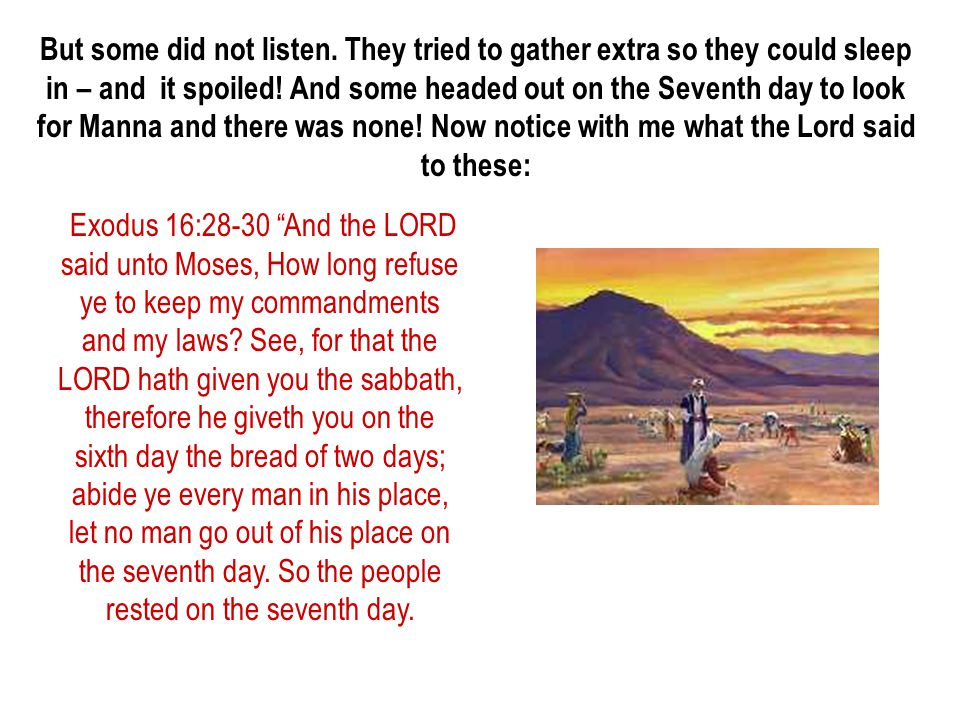But some did not listen. They tried to gather extra so they could sleep in – and it spoiled! And some headed out on the Seventh day to look for Manna