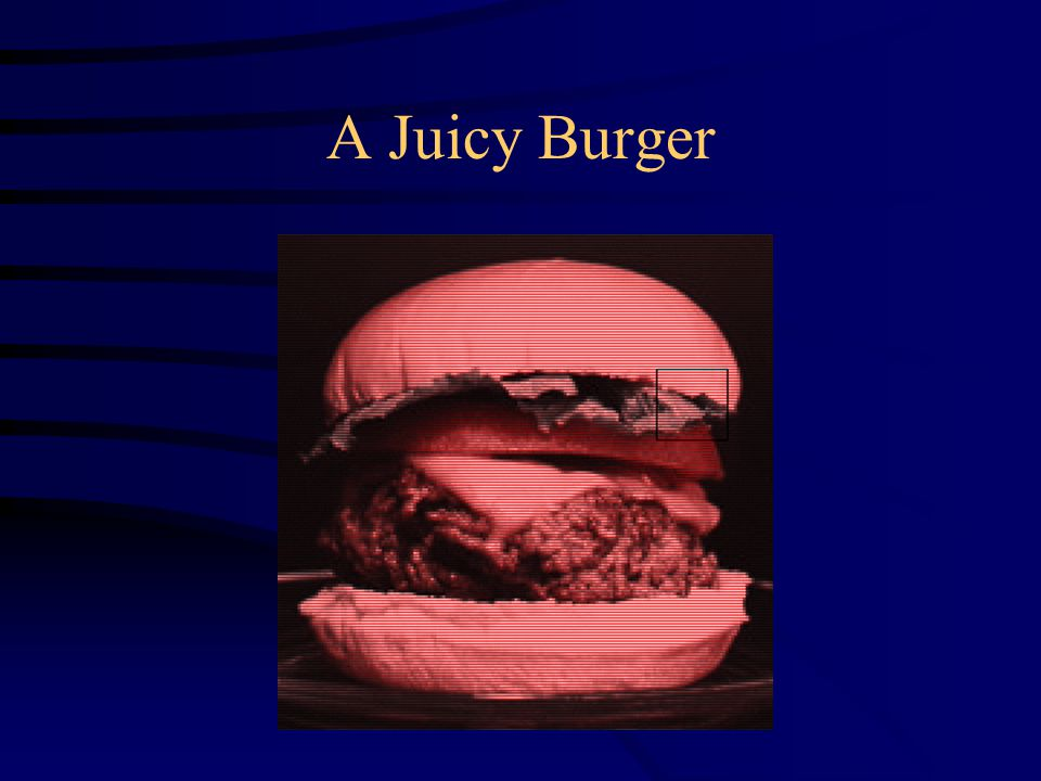 A Juicy Burger