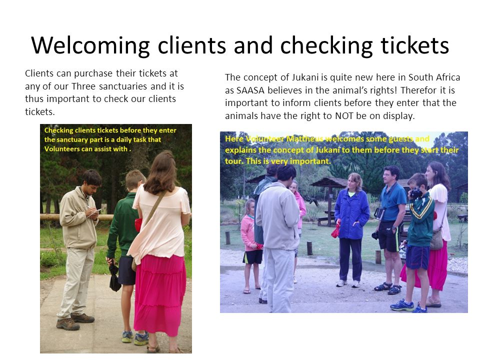 Welcoming clients and checking tickets Clients can purchase their tickets at any of our Three sanctuaries and it is thus important to check our clients tickets.