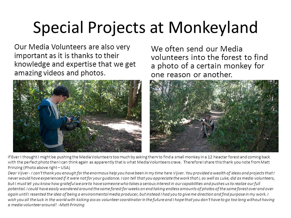 Special Projects at Monkeyland Our Media Volunteers are also very important as it is thanks to their knowledge and expertise that we get amazing videos and photos.
