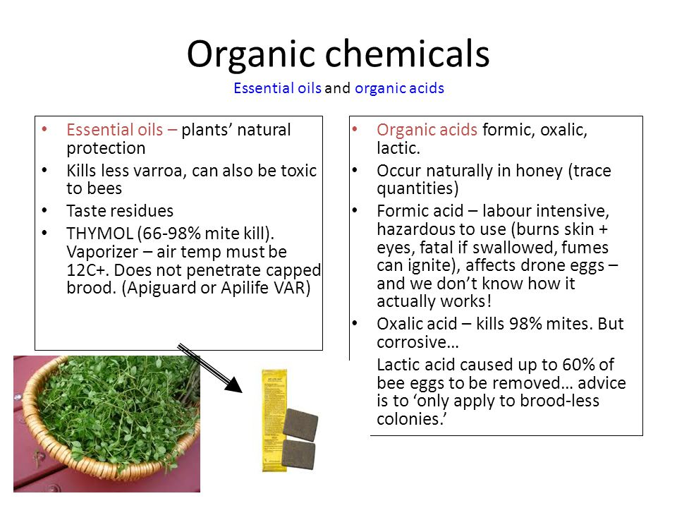 Organic chemicals Essential oils and organic acids Essential oils – plants' natural protection Kills less varroa, can also be toxic to bees Taste residues THYMOL (66-98% mite kill).