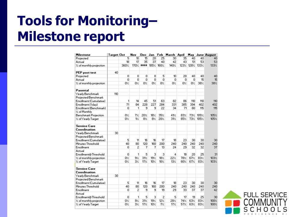 Tools for Monitoring– Milestone report