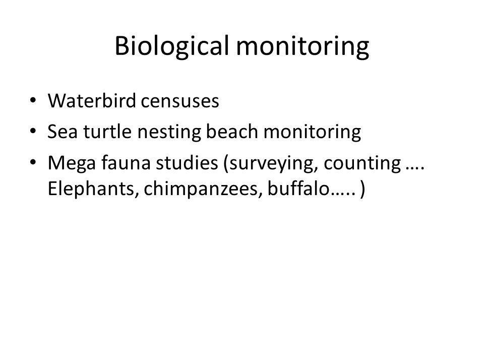 Biological monitoring Waterbird censuses Sea turtle nesting beach monitoring Mega fauna studies (surveying, counting ….