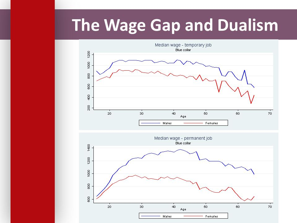 The Wage Gap and Dualism