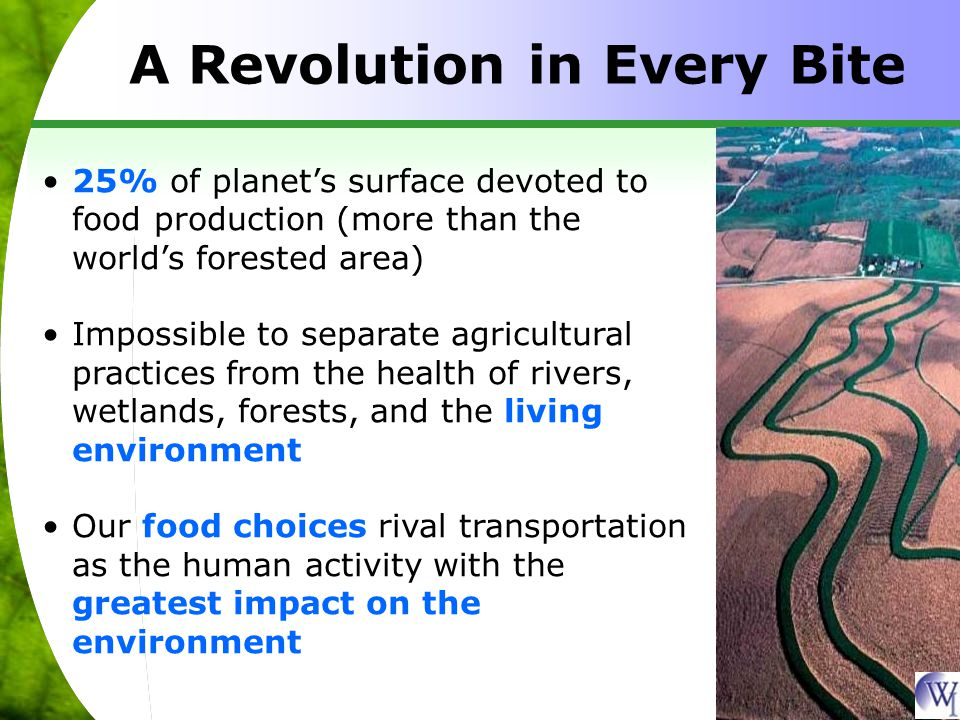25% of planet's surface devoted to food production (more than the world's forested area) Impossible to separate agricultural practices from the health of rivers, wetlands, forests, and the living environment Our food choices rival transportation as the human activity with the greatest impact on the environment A Revolution in Every Bite