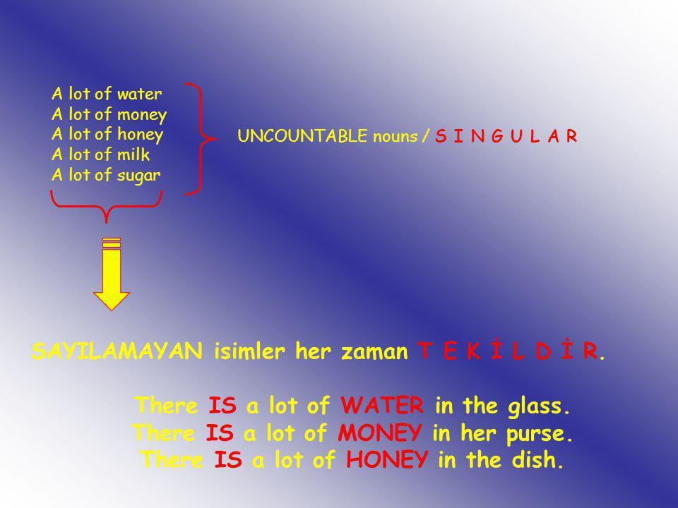 A lot of water A lot of money A lot of honey A lot of milk A lot of sugar UNCOUNTABLE nouns / S I N G U L A R SAYILAMAYAN isimler her zaman T E K İ L